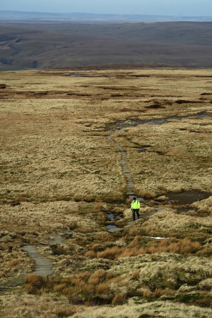 Swaledale_March2016_20
