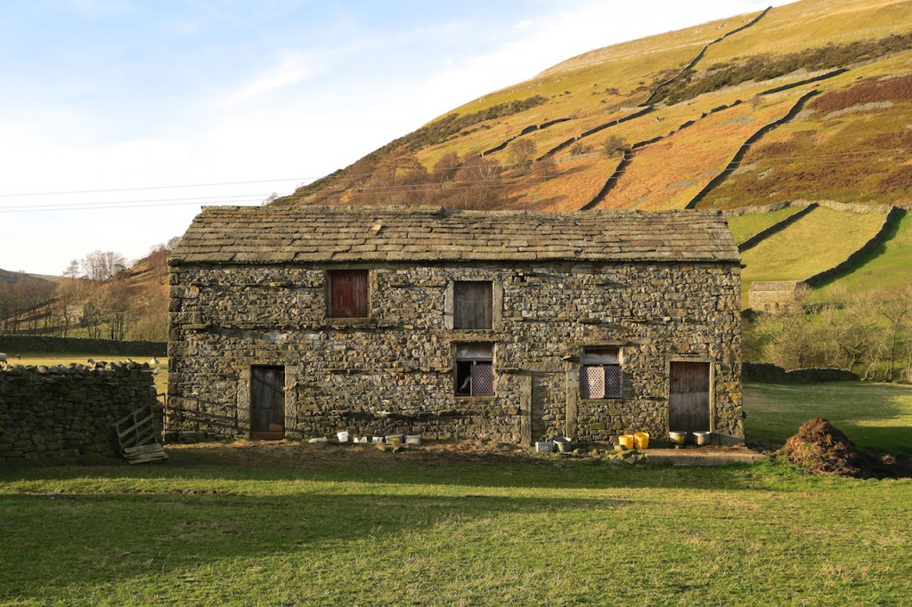 Swaledale_March2016_31